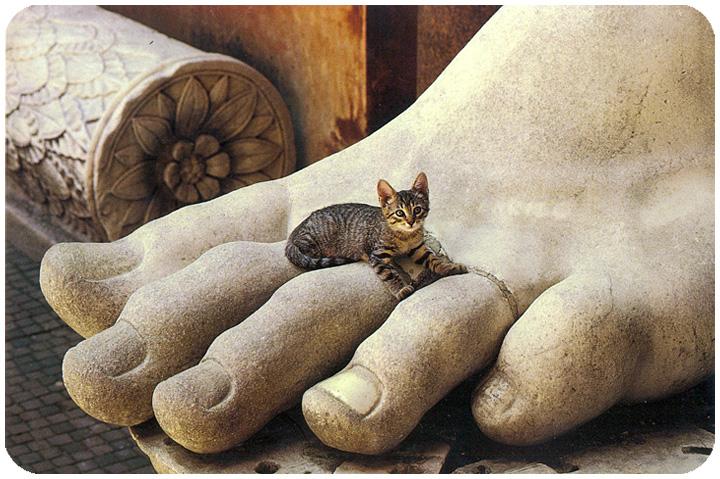 Le temple des chats - Page 2 Postcat4